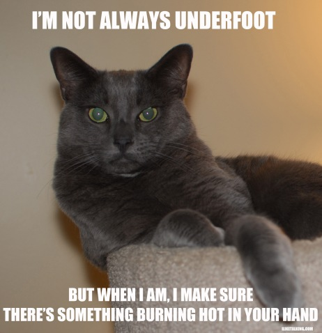 not-always-underfoot