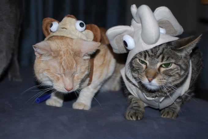 Cats_Costumes_Iliketalking